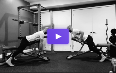 The Chest Supported Dumbbell Row